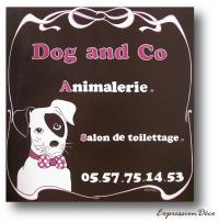 dog-and-co.jpg